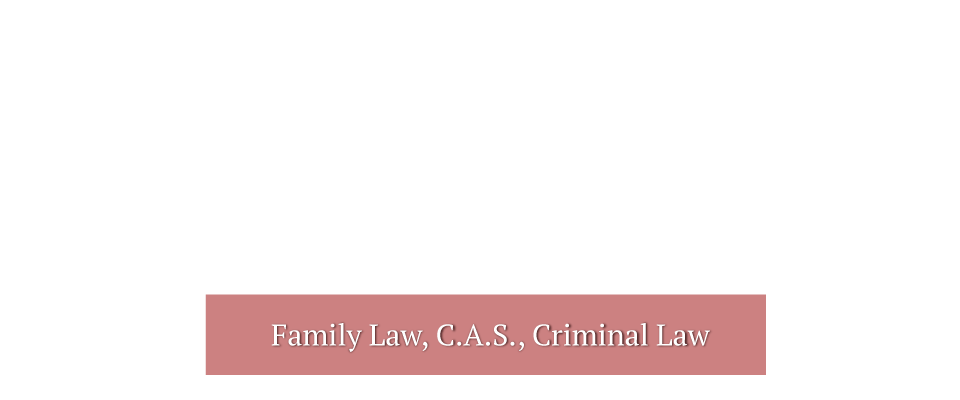 Family Law, C.A.S., Criminal Law